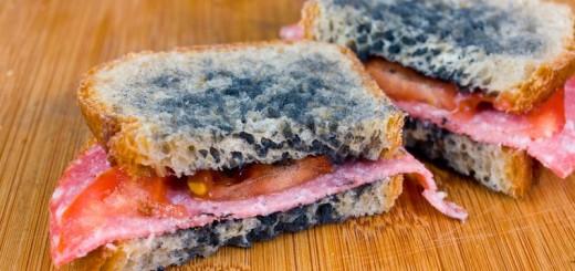 Mindig káros az egészségre a penészes étel?